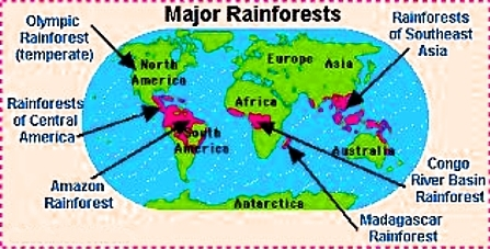 Rainforests In Africa Map.Untitled Document